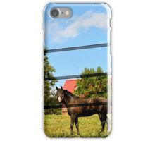 A Horse and A Barn iPhone Case/Skin