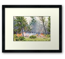 The Burning Of The Everglades Framed Print