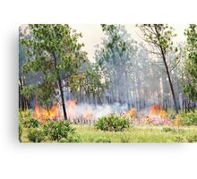 The Burning Of The Everglades Canvas Print