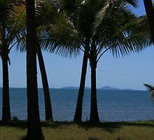 A postcard from Mackay by Tracey Victor