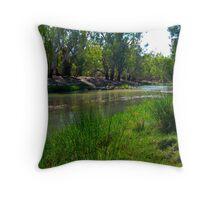 Berry Jerry Creek 02 Throw Pillow