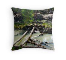 Old Bridge Throw Pillow