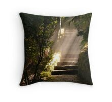 shafts of sunlight in the gloom Throw Pillow