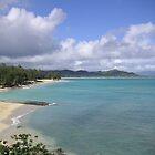 Hawaii coastline by Patrick Eckard