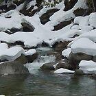 Still Waters by dwcdaid