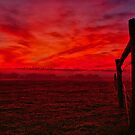 """Red Dawn at Shelford"" by Phil Thomson IPA"