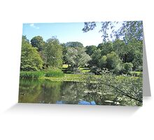 Park of the Water Lilies Greeting Card