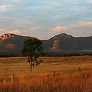 Mt Walsh Sunrise by Julie Just