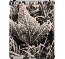 Frozen iPad Case/Skin