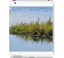 WetLands - A View  iPad Case/Skin