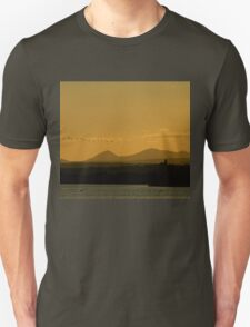 Geese over Derryveagh mountains at Twilight Unisex T-Shirt