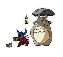 Totoro and Stitch mash-up! Photographic Print