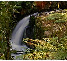 Noojee Falls, East Gippsland Victoria Photographic Print