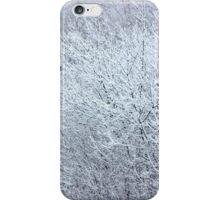 Winter's Spell II iPhone Case/Skin