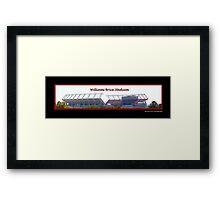 Williams Brice Stadium Framed Print
