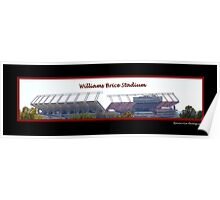 Williams Brice Stadium Poster