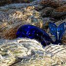 A Fishy Tail......... by lynn carter