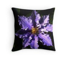 The Light of a Flower Throw Pillow