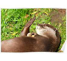 """I Really """"Otter"""" Get My Nails Done ! Poster"""