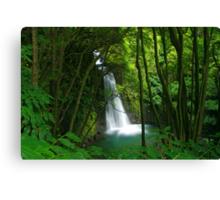 Salto do Prego waterfall Canvas Print