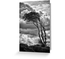 Wind & Wuthering Greeting Card