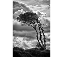 Wind & Wuthering Photographic Print