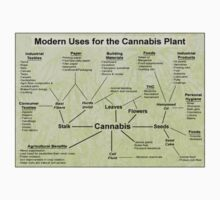 The Modern Uses For Cannabis by artBarfuncle