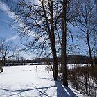 Shadow of Winter by Lynn Gedeon