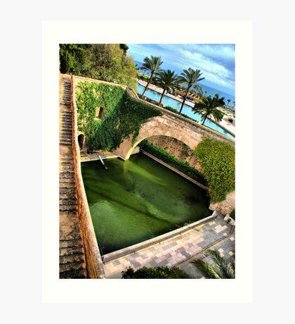 Palma - The Pond Art Print