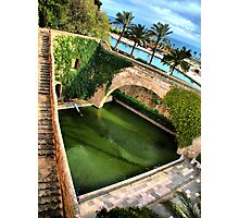Palma - The Pond Photographic Print