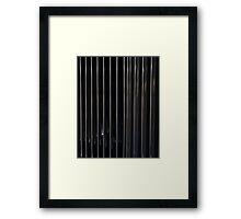 RR striaght up Framed Print