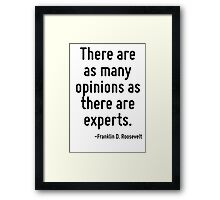 There are as many opinions as there are experts. Framed Print