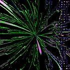 Color Burst by charlena