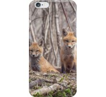 Kit Foxes 2011-1 iPhone Case/Skin