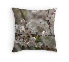 Osaka sakura Throw Pillow