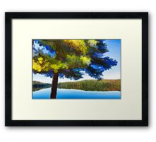 Sun and Shade Pine Tree On the Lake - Colorful Autumn Impressions Framed Print