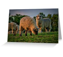 """The Call of the Shepherd"" Greeting Card"