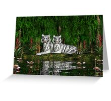 Pair of White Tigers Greeting Card