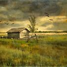 Country Life by AnnieSnel