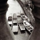 Oxford boats. by Damian Jenkins