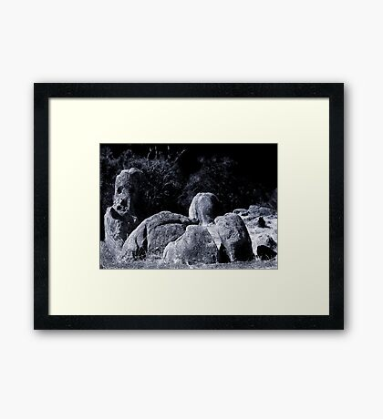 Stone Faced Sentinel Framed Print