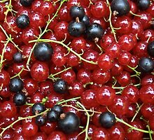 Red and black currant in a pile by turpentine
