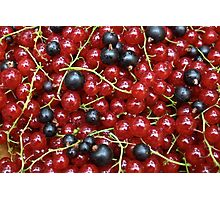 Red and black currant in a pile Photographic Print