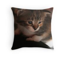 Maggie, Baby Throw Pillow