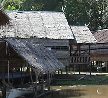 Traditional Tribe Houses - Borneo by David Meyer
