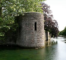 Turret at the Bishops Palace, Wells by Iani