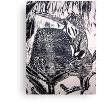 Honeyeater Canvas Print