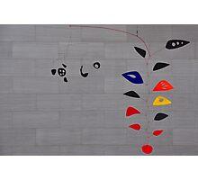 Alexander Calder, Cascading Flowers Photographic Print