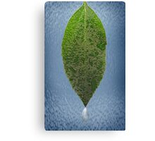 Dew Laden Leaf Canvas Print