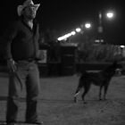 man and dog by sdks
